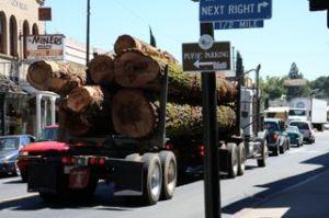Logging Truck!